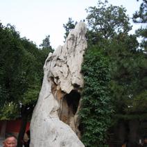 Zdj. nr 99;Kamienie naturalne - Pekin