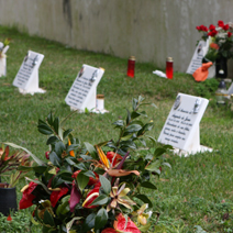 Zdj. nr 19;Cmentarz na Maderze
