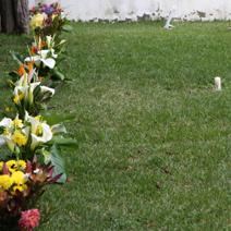 Zdj. nr 20;Cmentarz na Maderze