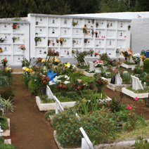 Zdj. nr 22;Cmentarz na Maderze